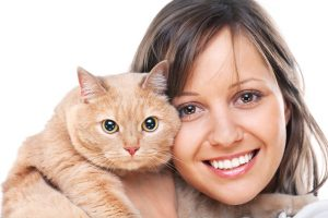 Katzenverhalten verstehen und gemeinsam lernen und wachsen
